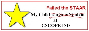bumper-sticker-for-failing-staar-300x105
